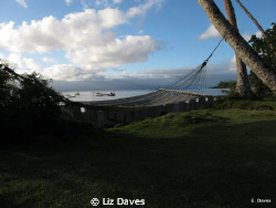 Time to say goobye to Fiji. by Liz Daves 